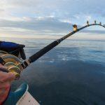 Spot Mancing: Tempat & Lokasi Mancing Laut Terbaik di Indonesia